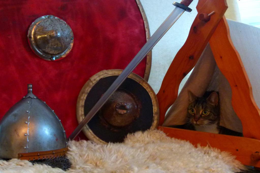 Cat in front of Viking weapons (M. Toplak, Universität Tübingen)
